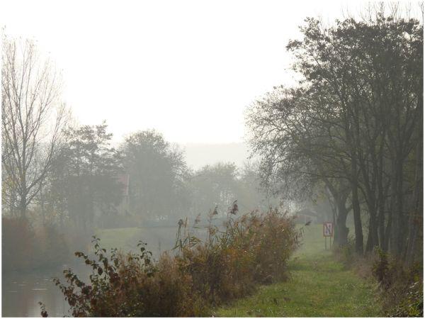 Matin brumeux d'automne