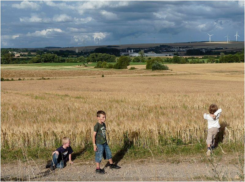 2 Les moulins d'Eole s'invitent dans nos paysages