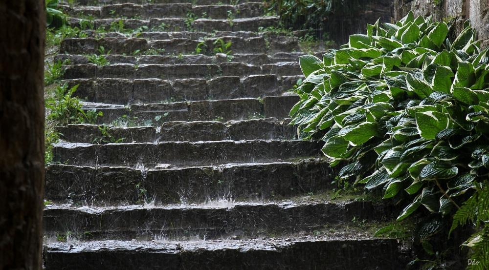Il pleut toujours ....