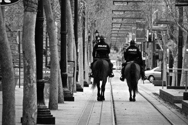 Two police officers on horseback in downtown SJ