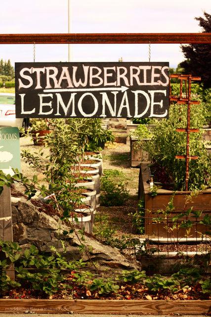 Strawberries, Lemonade -->