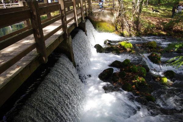 waterfall under a bridge