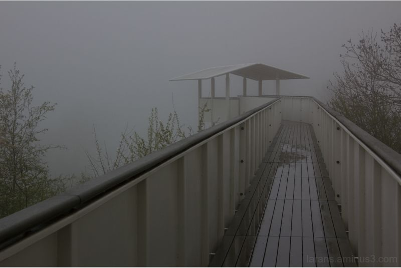...into the mist...