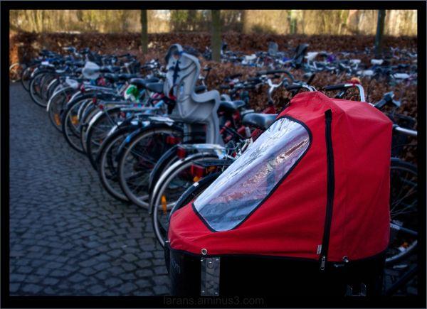 lund sweden bicycle window