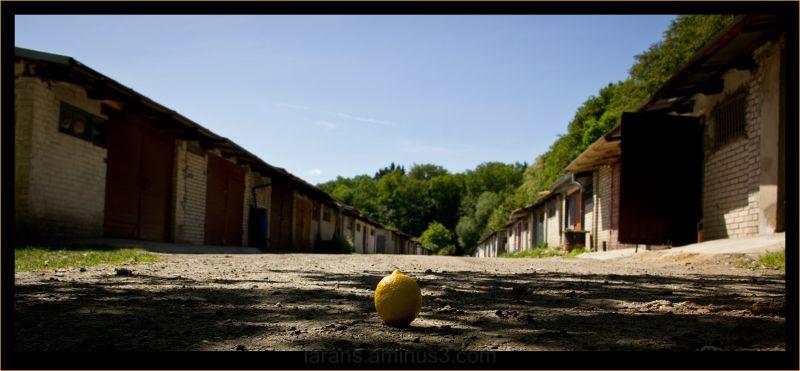 ...lemon on tour in Poland...(IV)