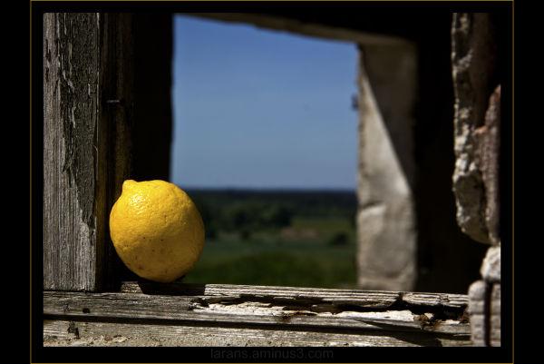 ...lemon on tour in Poland...(VII)