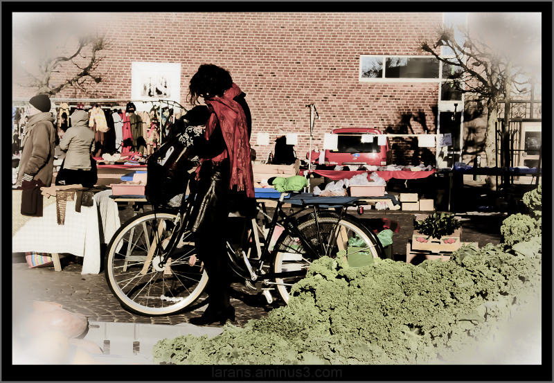 ...the bicycle photo project LUND (4)...