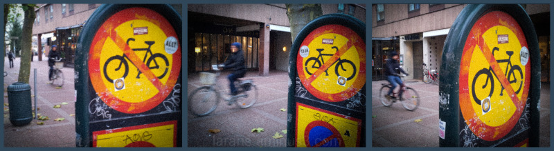 ...the bicycle photo project LUND (6)...