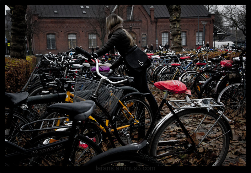 ...the bicycle photo project LUND (7)...