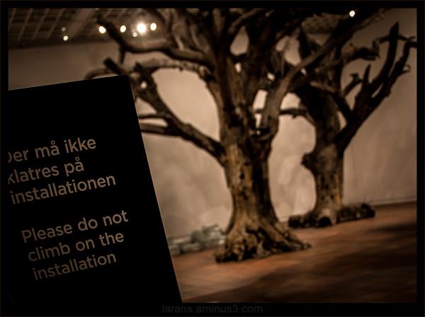 ...Trees...