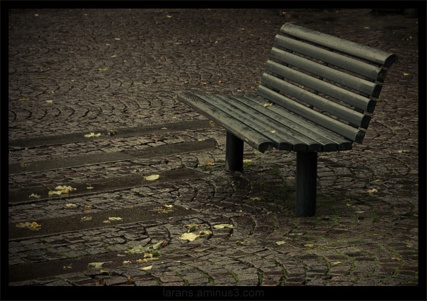 ...the Bench...