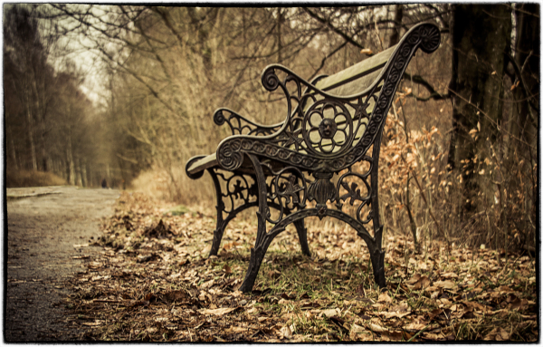 ...the abandoned bench...