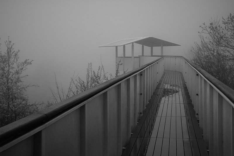 ...the fog is rising...