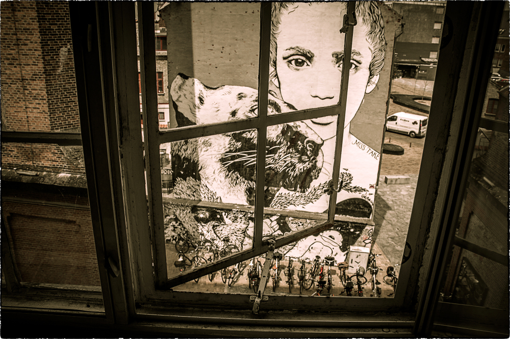 ...textilt fönster...