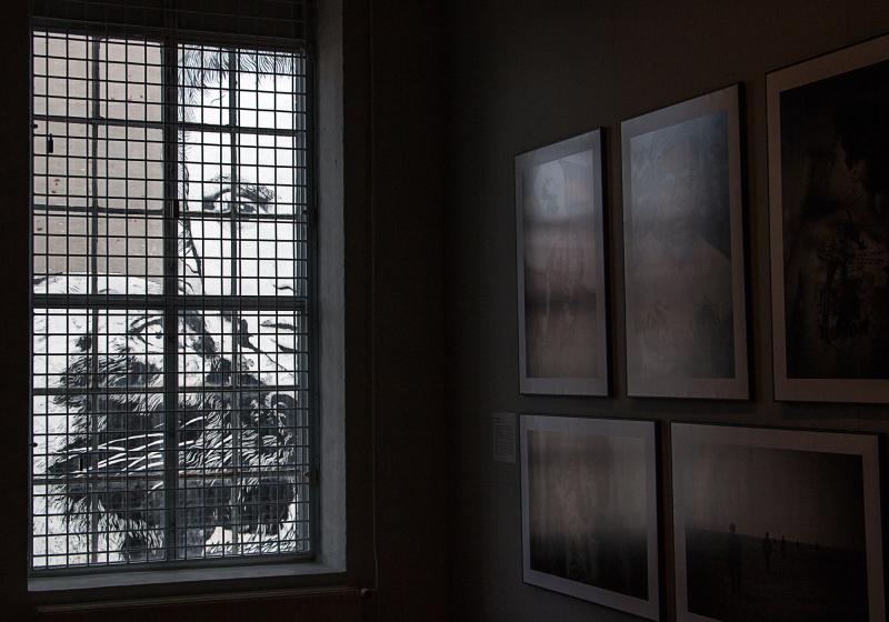 ...vilt fönster...
