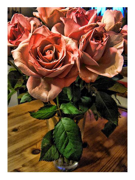 Rusty Roses