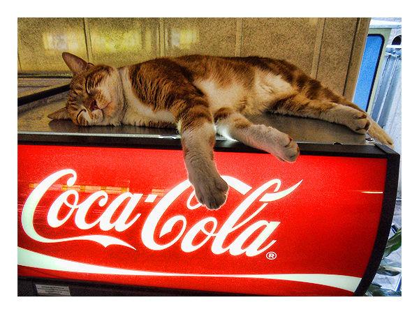 I Love Coke...