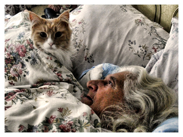 The Old Lady And Her Cat