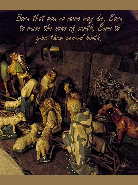 Gezegende Kerst - Christmas Blessings 2011