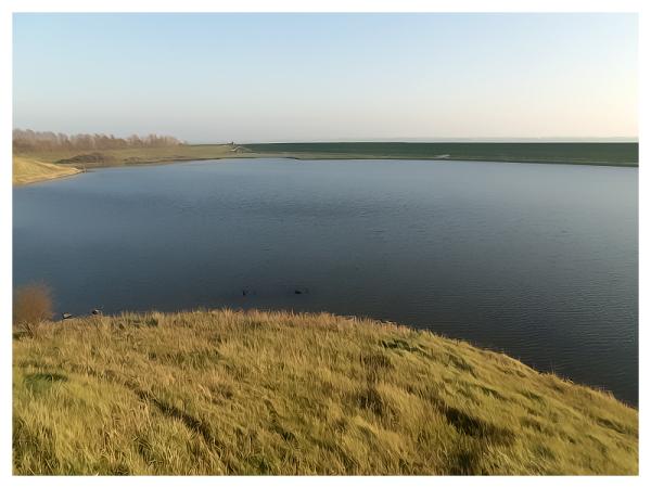 Water & Land