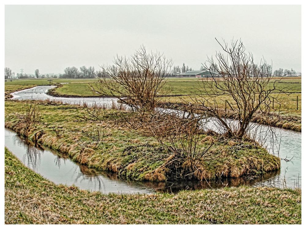 Landschap op eilandje, De Woude, Noord-Holland