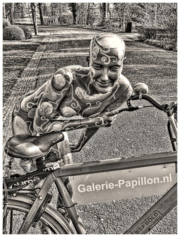 Galerie-Papillon.nl