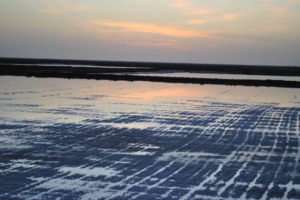 a salty sunset