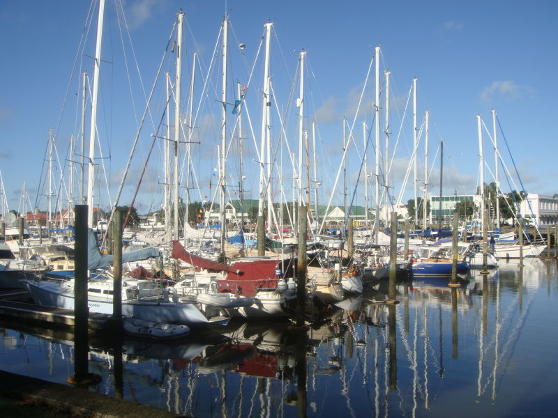 a nice port in whangarei
