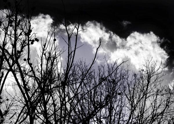 Every Day Dark Sky In Iran :(