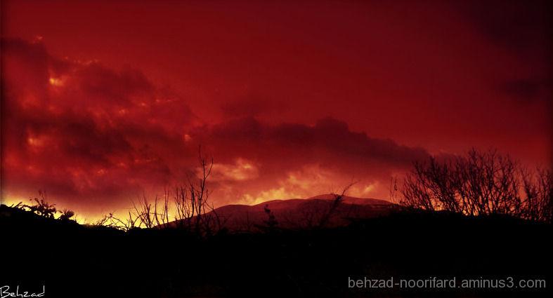 fall in shiraz