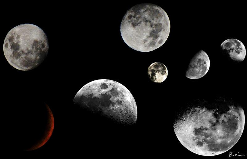 My Favorite Moon