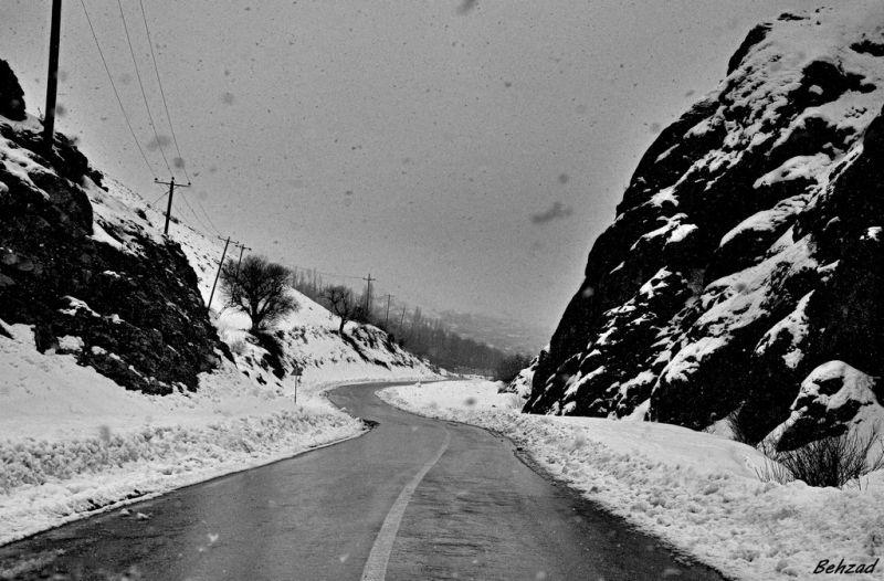 http://www.flickr.com/photos/behzad_noorifard/5489