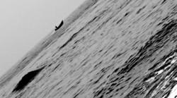 Alone In Dark Sea.