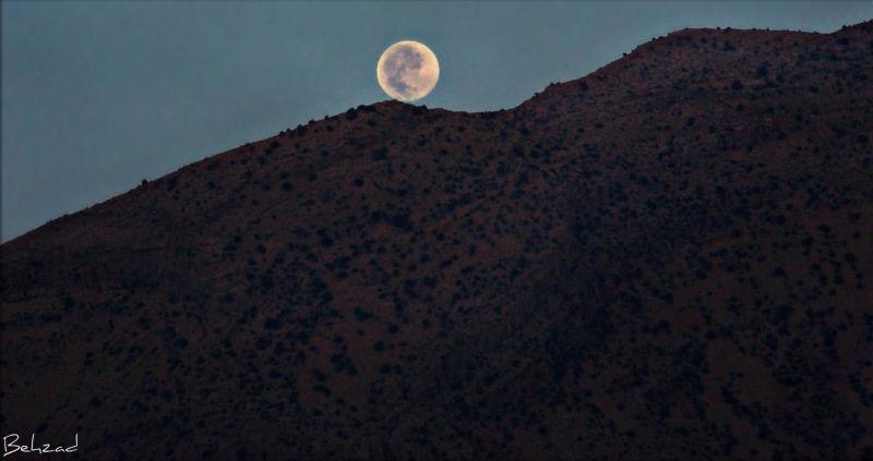 http://www.flickr.com/photos/behzad_noorifard/4928
