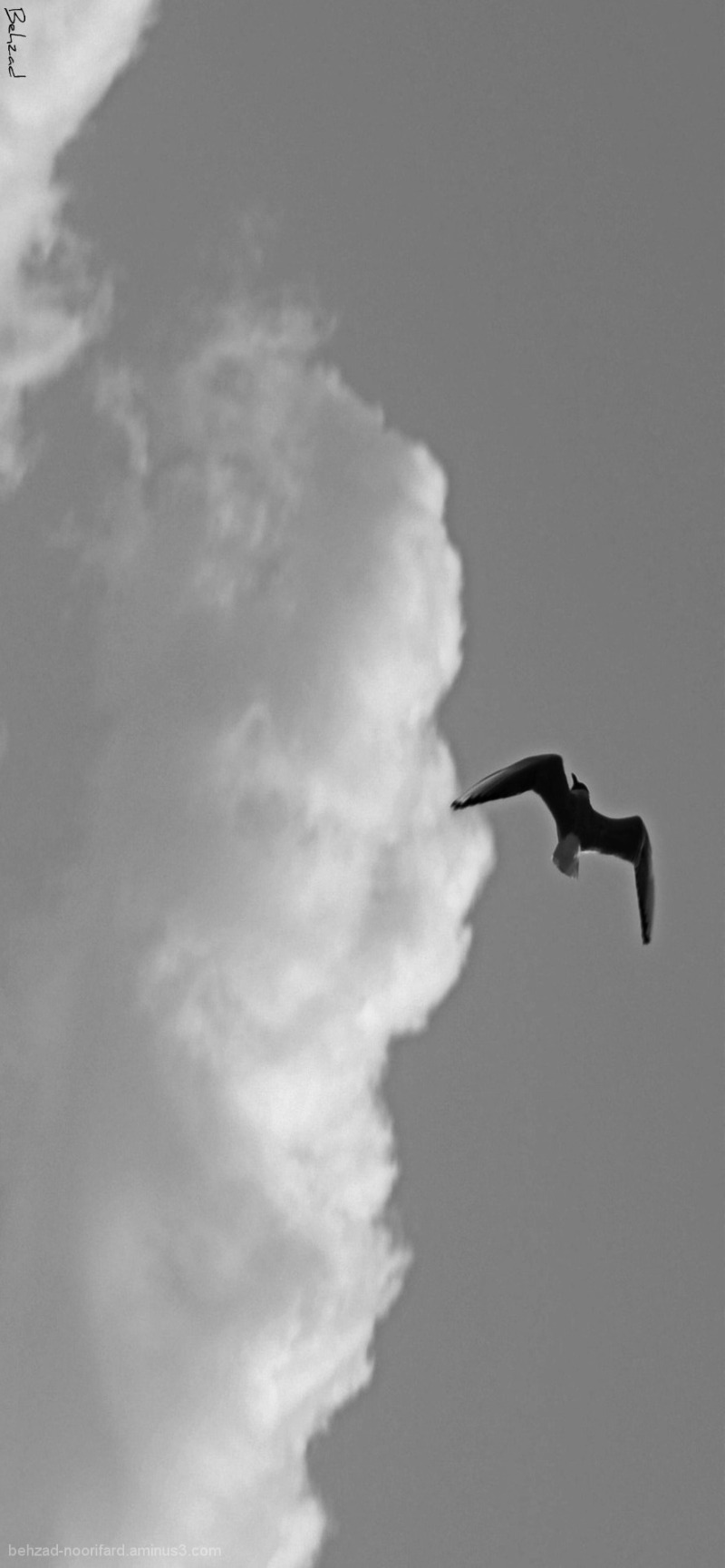 Fly between clouds