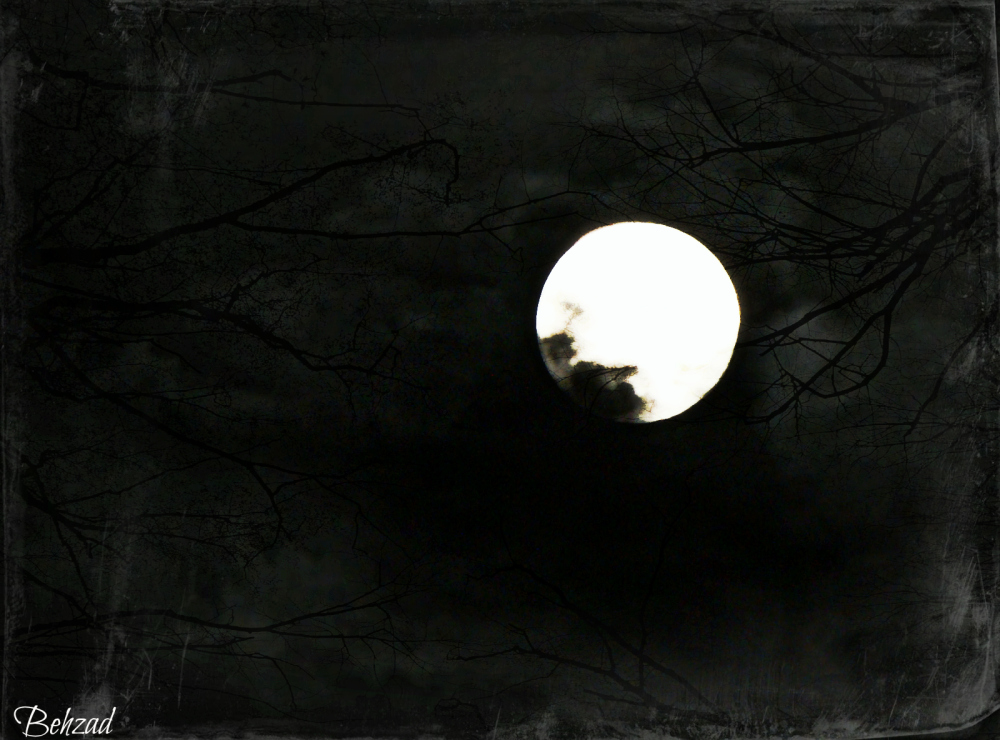 Alone With Moon  (again)
