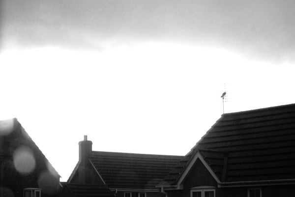 Storm Clouds Over Rooftops
