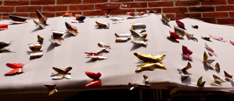 Butterflies on the awning.