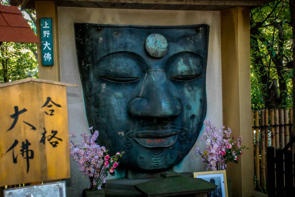 Temple face.