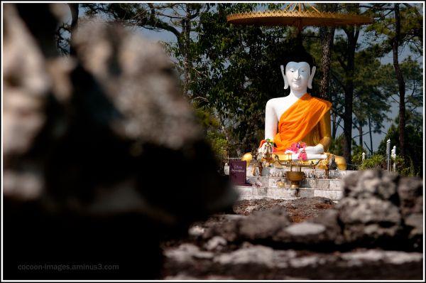 sitting boeddha in phu kra dung