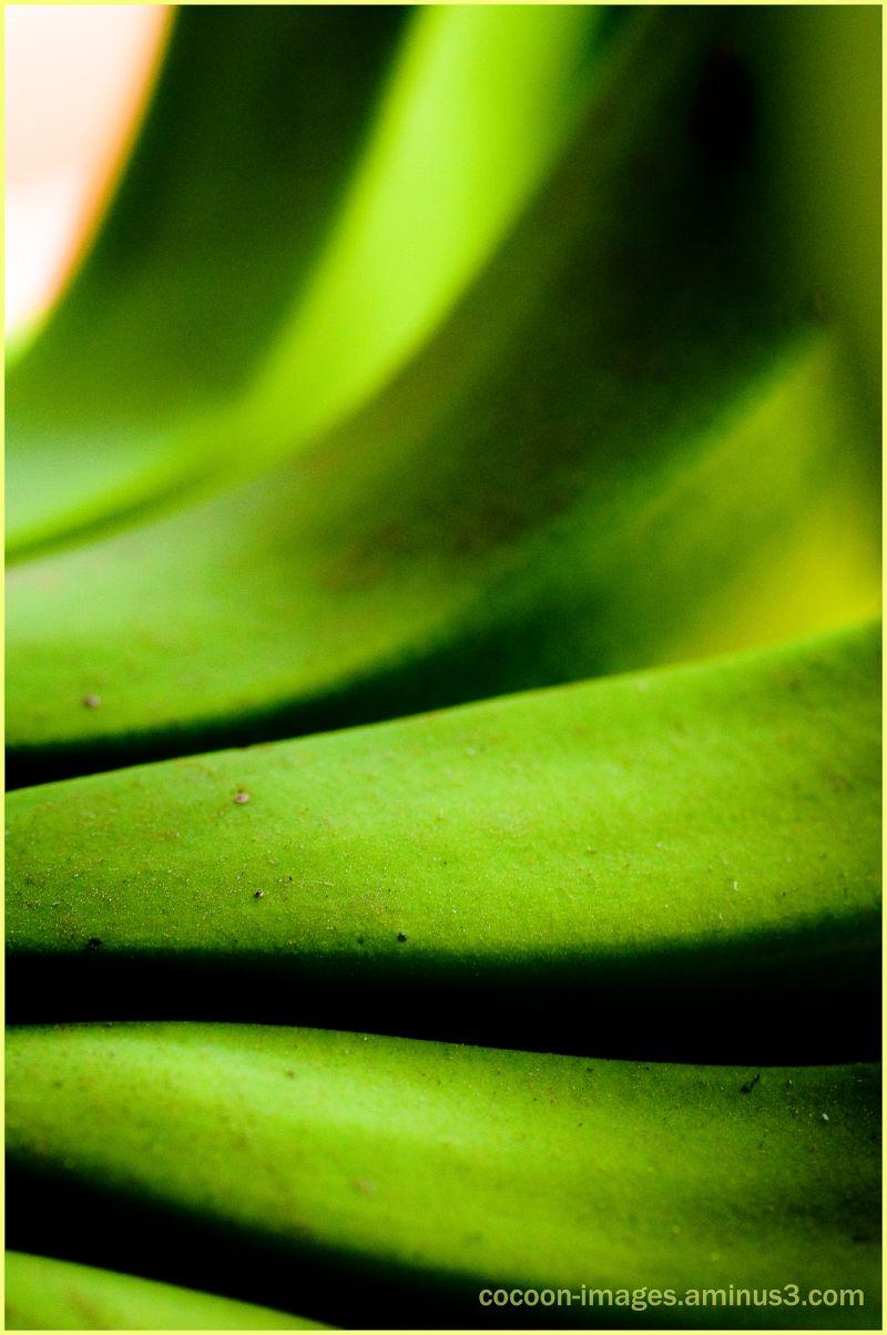 Groene bananen