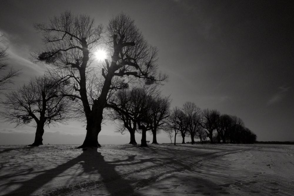 winter moment