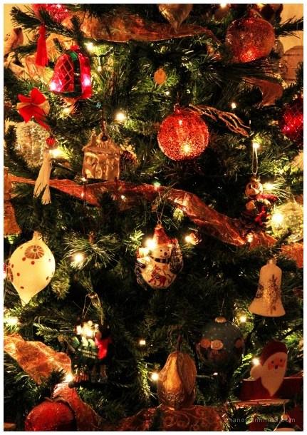 Very Merry Christmas !