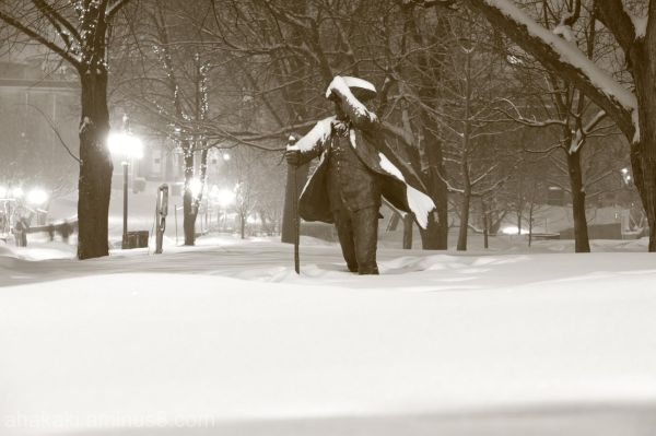 Winter in Montreal (McGill)