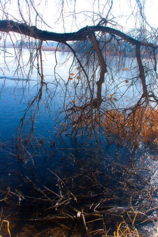 Iced lake by BlindPoet