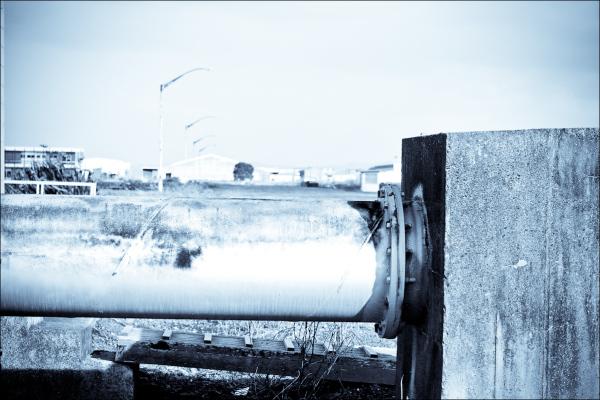 The Pohutukawa & The Pipe