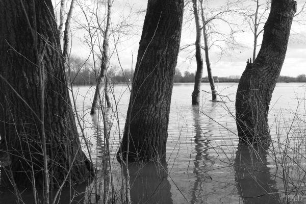 La Colère de la Loire