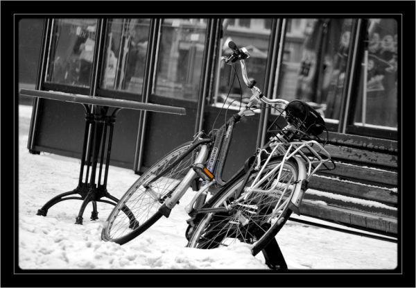 Le vélo abandonné..