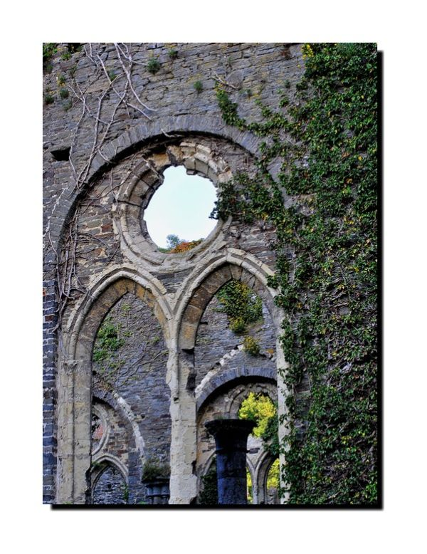 les ruines de l'abbaye...(4)