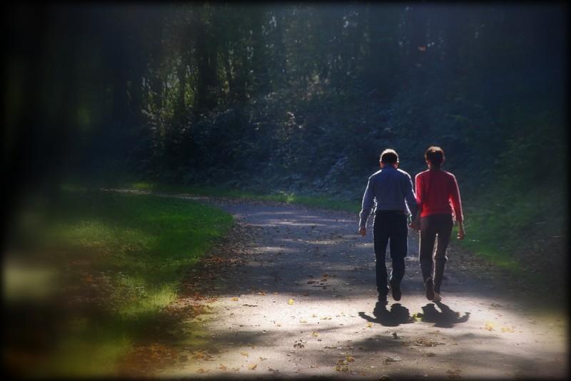 Promenons-nous dans les bois tant que...